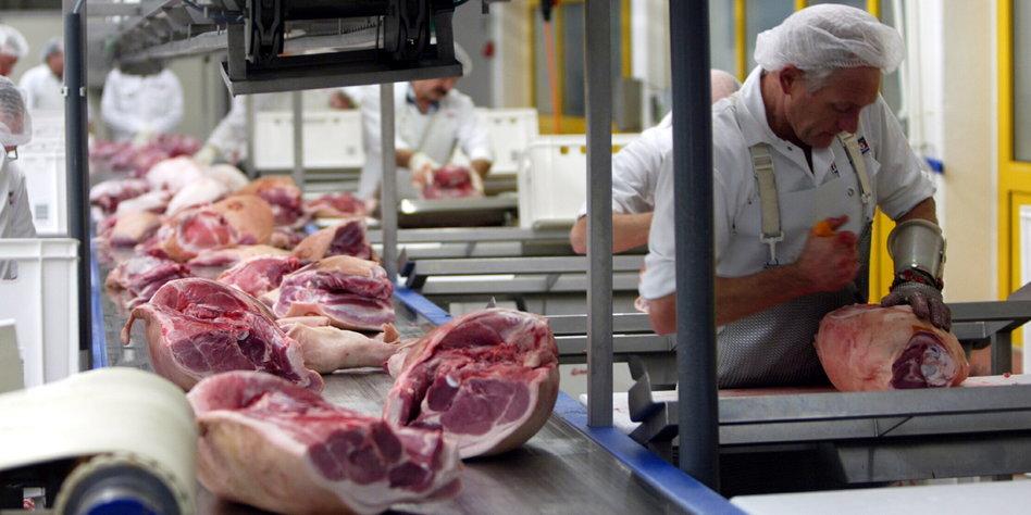 Ein weiterer Mindestlohn: 7,75 Euro fürs Tiereschlachten ...