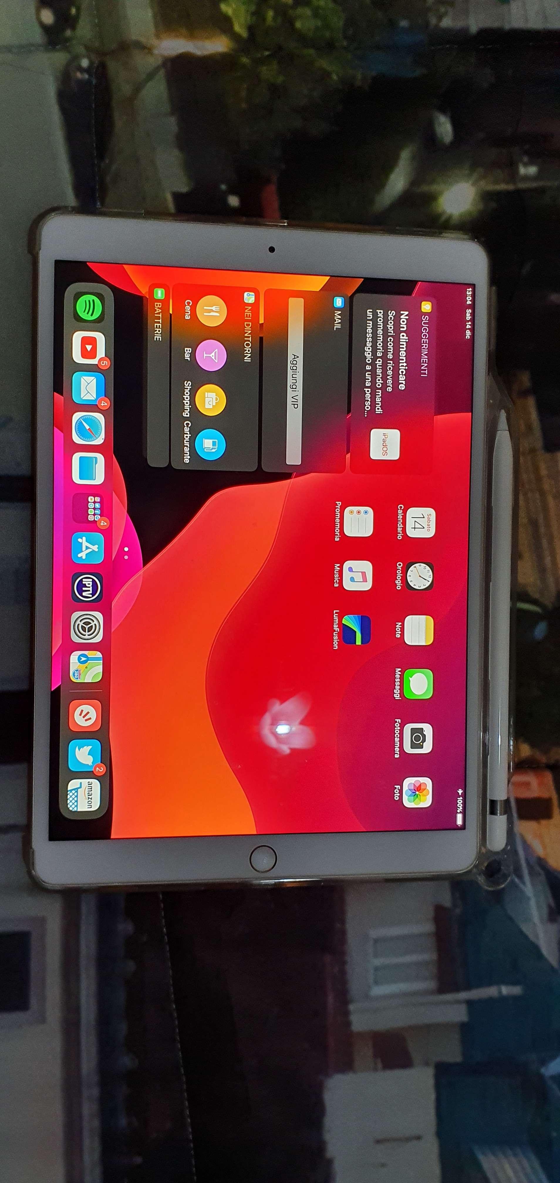 Ipad pro 10.5 512gb + cellular - Vendo iPad usato - Italiamac